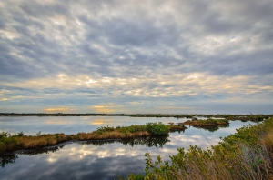 Black Point Drive - Canaveral National Seashore, DSC_3881-Edit