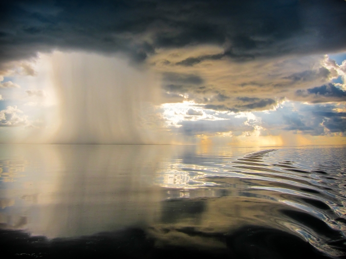 Micro Storm 1 - IMG_3590