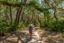 Hiking the roads on Cumberland Island