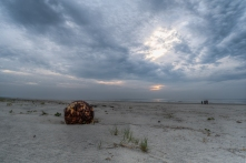 The Beaches of Cumberland Island