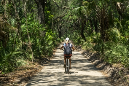 Biking the Main Road - Cumberland Island, GA