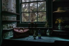 Dr. Marius Johnston's Apothecary - Plum Orchard Mansion