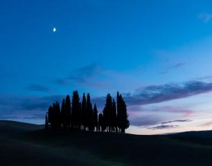 Uniquely Tuscany - Montalcino, Italy