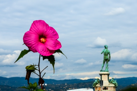 The Piazzale Michelangelo - Florence, Italy
