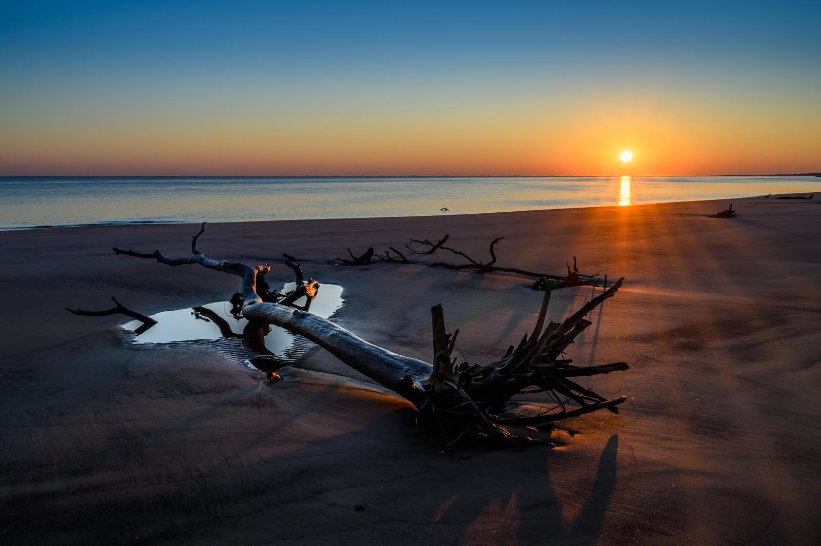 Boneyard Beach, Big Talbot Island, FL